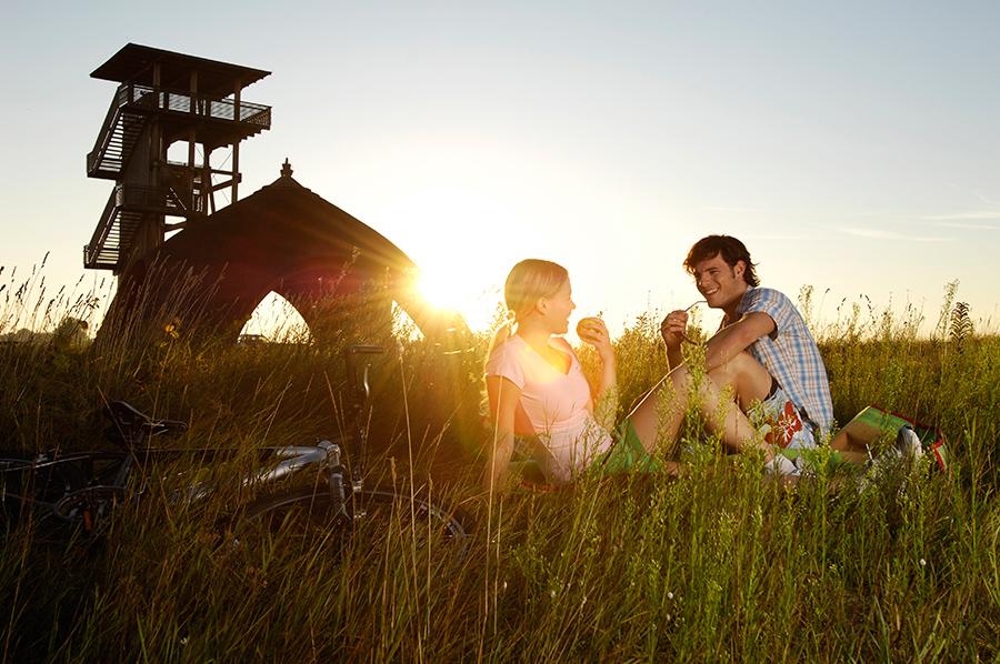 Picknick am Neusiedler See