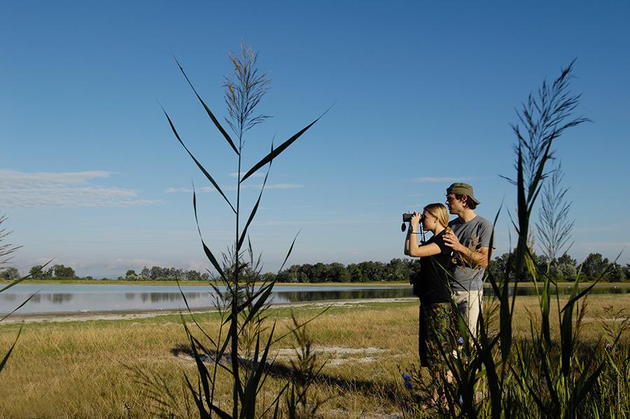 Paar mit einem Fernglas am Neusiedler See